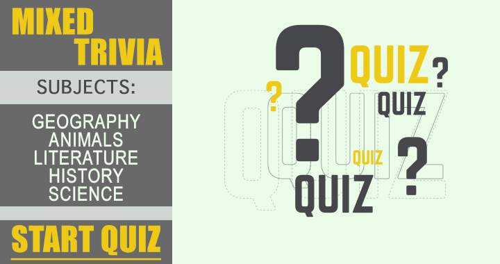 Are you a master in playing quizzes?